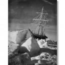 Капитан Арктика